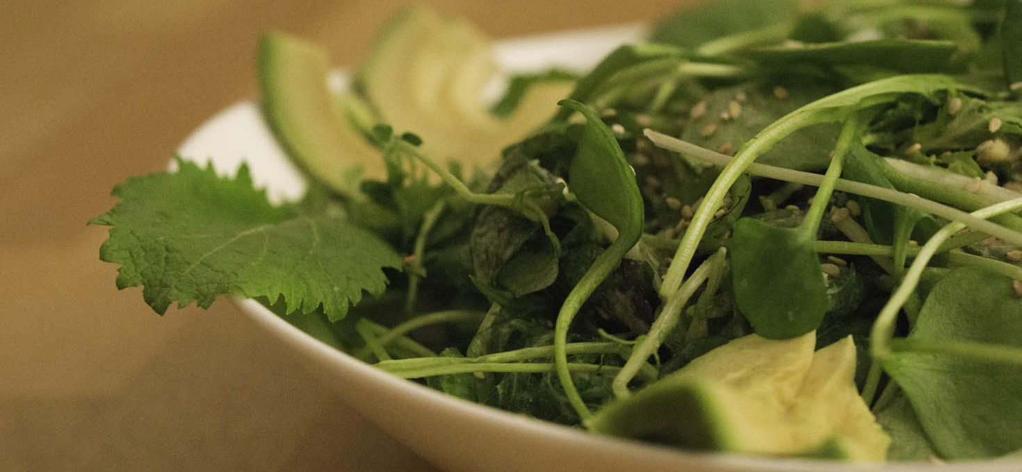 Pflück-Salate mit Zitronen-Sesam-Dressing